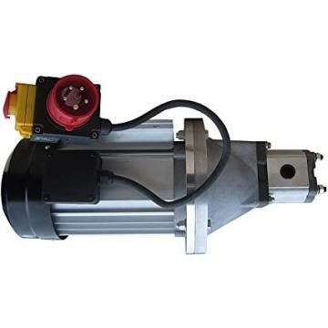 Daikin Olio Idraulico Motore Pompa M15A1-2-30 V15A1R V15AIR-40 PV6-2R1B-C Mori
