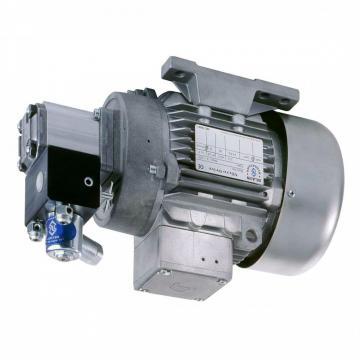 Daikin Pompa Idraulica Motore Unità, # Sdm 174-2v2-2-20-069, W / Valvole, Usato