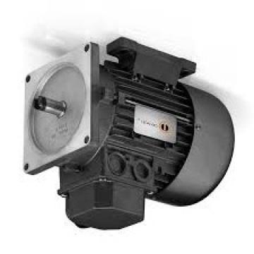 API ELMO TSP 112/4-65-T-12100 - Motore Elettrico + Pompa Idraulica 05055882