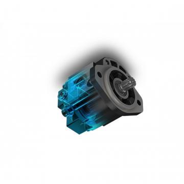 Filtro aspirazione dei vari 130LPM 1.1/2 BSP 125 Micron Casappa elemento filtrante