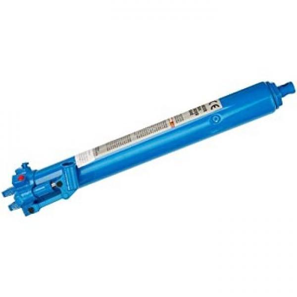 Aquila pro Idraulico Tooling - Pompa Manuale S / Acmg 2 Velocità 901 cm ?