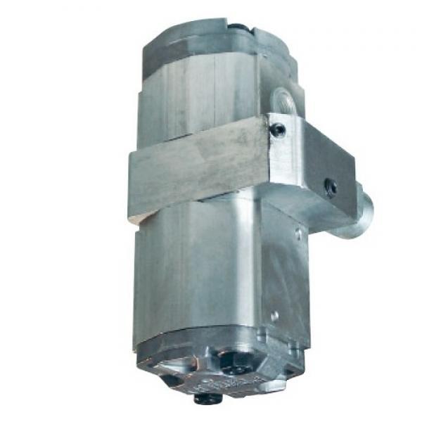 Spaccalegna verticale elettrico con motore monofase Blackstone EVL 12-70