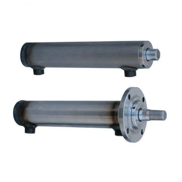 Flowfit Idraulico Doppio Agendo Micro Cilindro / RAM 25x16x200x296mm 71625/200