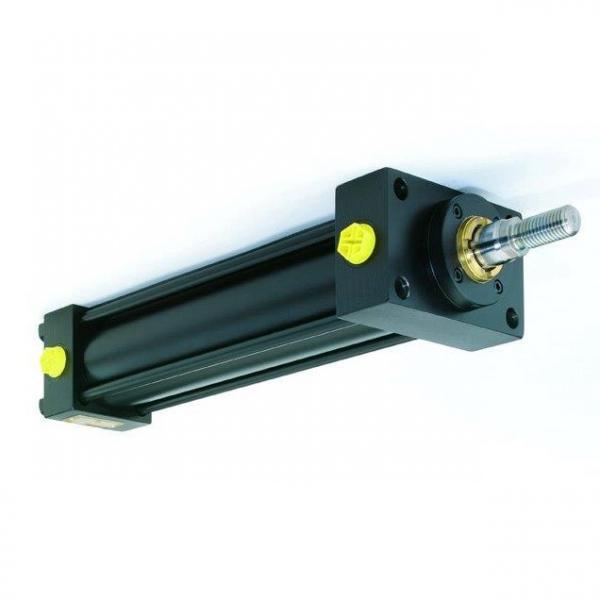Cilindro idraulico pistone doppio effetto 60x35x100