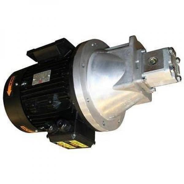 13HP Honda Benzina Motore Guidato Pompa Idraulica ZZ002404 Omaggio UK