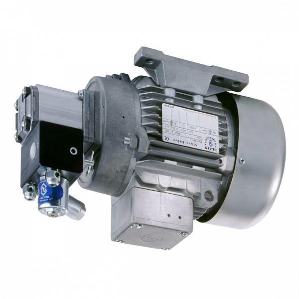 Vickers Pompa Idraulica PVB6-RSY20 CM 11-JA-S28 W/3 HP Tokyo AC Motore,220V
