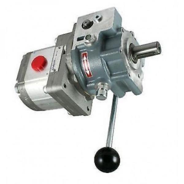 Flowfit Idraulico 240v Motore Set Pompa, 3Kw, 5cc / Rev, 7.2 L/Minuto ZZ000129