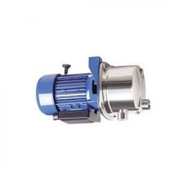 Idraulico 22 Gpm Due Palco Alto Basso Pompa C/W Bell Alloggiamento Motore Kit