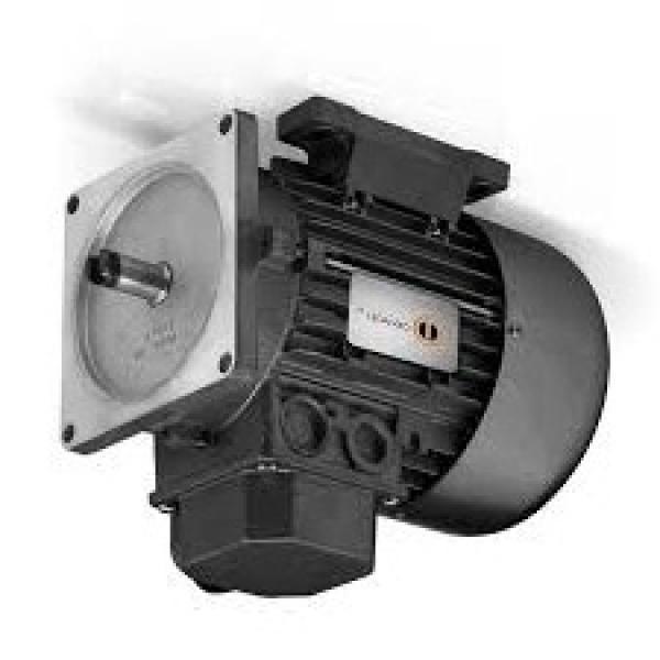 Pompa Idraulica per Massey Ferguson 396 (Motore 1006.6), 399 (10 + 8 cm ³)