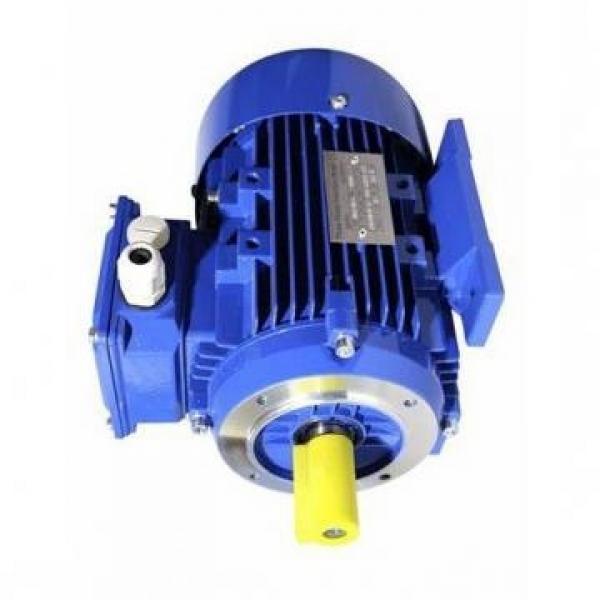POMPA IDRAULICA 07432-71201 per Komatsu D65S-6 D95S-1 D65E-6 D65A-6 Bulldozer