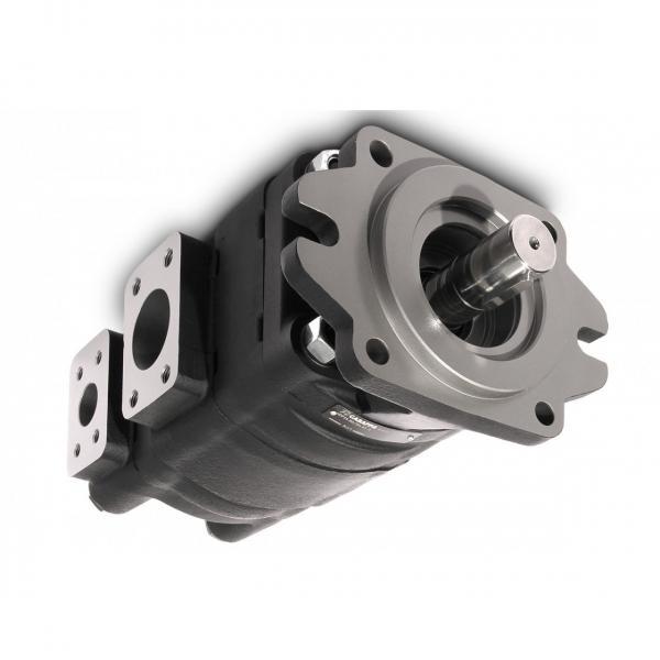 POMPA idraulica Casappa 04.4238.0024 KP20-16 S0.03S1-LEB/EA-N-AV 4320014952193