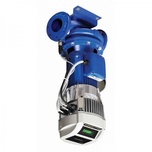 Elettropompa Motore Lowara 3HM5 HP 1,00 Autoclave Pompa per acqua multistadio