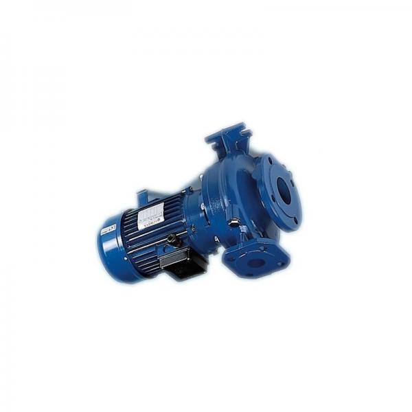 Elettropompa per autoclave 1 1.5 2 3 Hp pompa acqua Lowara CAM CA 80 a 210 L/min