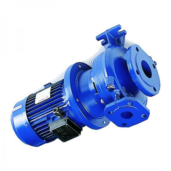 Elettropompa Centrifuga Motore Lowara BGM7/A HP1,1 Autoadescanti Autoclave Pompa