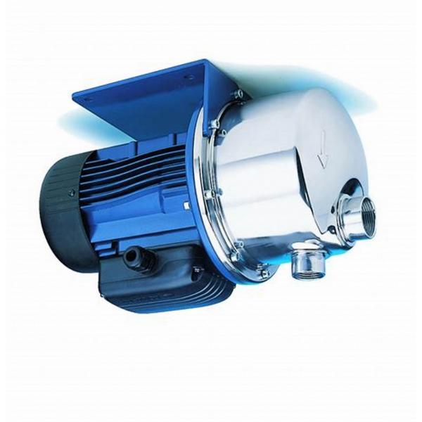 Elettropompa pompa sommersa per pozzi Lowara 4GS 15 M Hp 2 KW 1.5 per pozzi