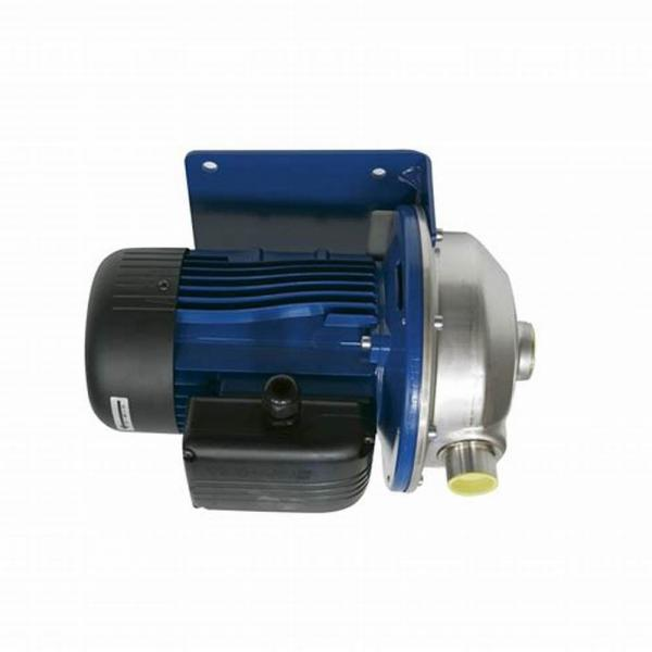 Elettropompa autoclave Lowara CAM 70/34/B Hp 1.2  Pompa Centrifuga Motore