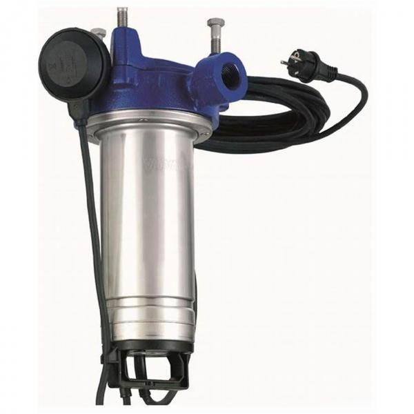 Elettropompa Centrifuga Bigirante Lowara CAM 70/33/B Hp 1 Pompa Motore Monofase