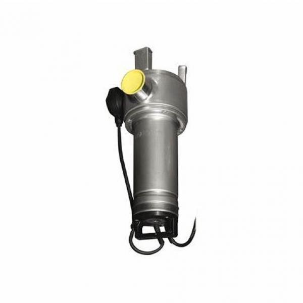 Elettropompa Lowara Pompa Verticale multistadio cantrifuga acciaio inox aisi304
